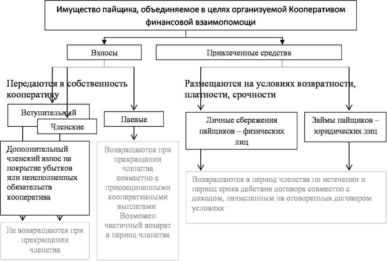 kolichestvo-chlenov-kooperativa